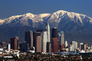 carpet cleaners in l.a. skyline