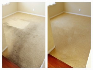 Artesia carpet cleaning before and after