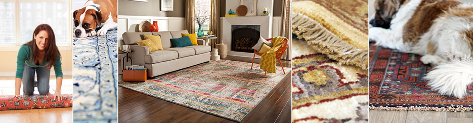 Collage of area rug cleaning services