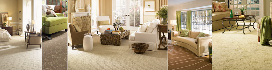 professional carpet cleaning collage