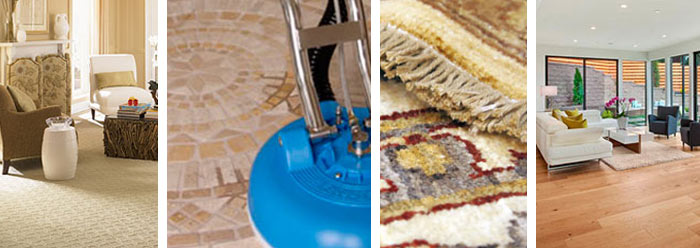 Sept 2016 Carpet Cleaning Specials Experience The