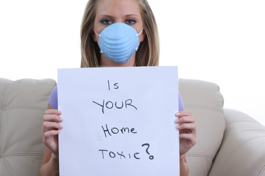 dangerous chemicals in the home