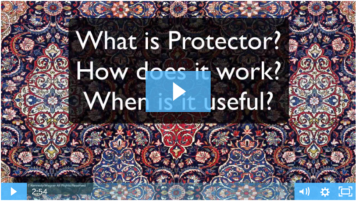 what is protector? video