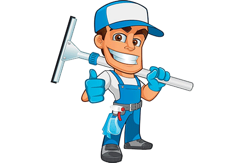 Window Cleaning professional